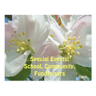 Special Events School Community Fundraisers Floral Postcard