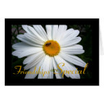 Special Friend Daisy Cards