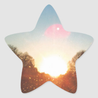 Special Moments Star Sticker