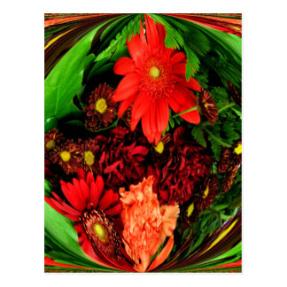 Special Occasions_ Postcard