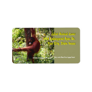 Special Sanctuary Rawa Kuno Legacy Forest Label