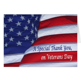 Special Thank you on Veterans Day Greeting Card