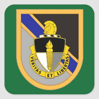 SPECIAL WARFARE EDUCATION GROUP FLASH/DUI STICKERS