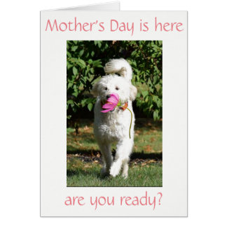SPECIAL WISH FOR ***MOM*** ON MOTHER'S DAY CARD