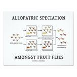 Speciation alopátrico entre moscas del vinagre comunicado personalizado