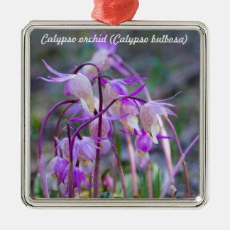 Species: Calypso orchid Metal Ornament