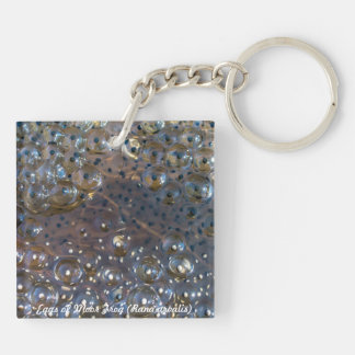 Species: Eggs of Moor Frog Double-Sided Square Acrylic Keychain