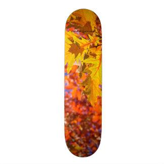Species: English oak Skate Deck