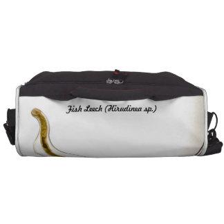 Species: Fish Leech Laptop Computer Bag