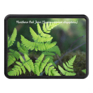 Species: Northern Oak Fern Tow Hitch Cover