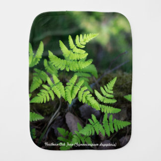Species: Northern Oak Fern Burp Cloth