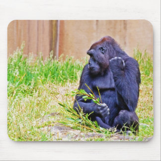 Species Subject Mouse Pad