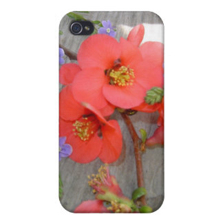 speck case flower romantic love cases for iPhone 4