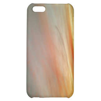 Speck case for iPhone 4  Rainbow Sky