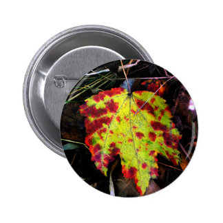 Speckled Autumn Leaf Pins