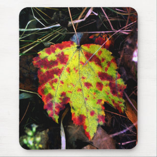 Speckled Autumn Leaf Mouse Pad