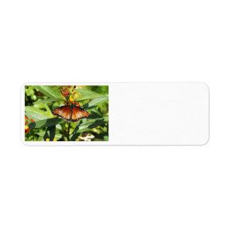 Speckled Butterfly Return Address Label