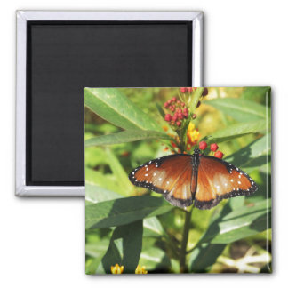 Speckled Butterfly Refrigerator Magnet