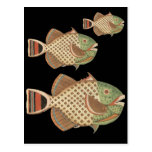 Speckled Fish Post Cards