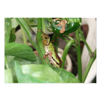 Speckled Frog in the Pepper Plant Business Card