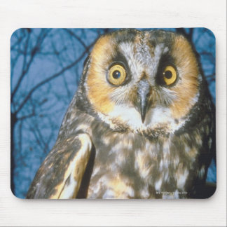 Speckled Own Mouse Pad