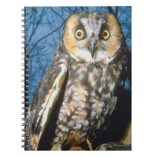 Speckled Own Notebook