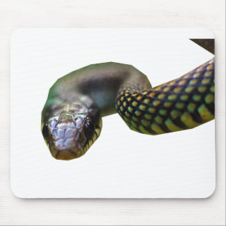 Speckled Racer Mouse Pad