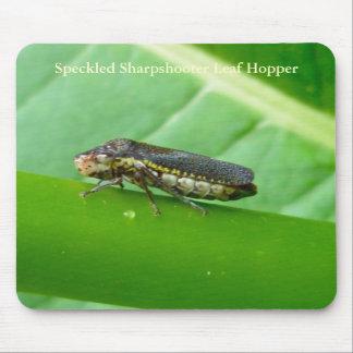 Speckled Sharpshooter Leaf Hopper Items Mouse Pad