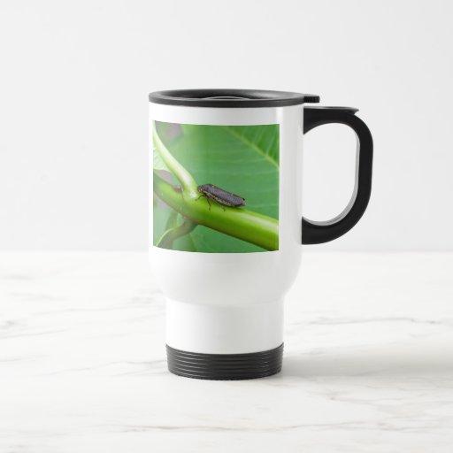 Speckled Sharpshooter Leaf Hopper Items Mug