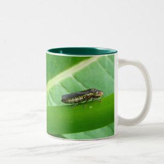 Speckled Sharpshooter Leaf Hopper Items Two-Tone Coffee Mug