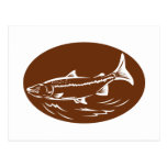 speckled spotted trout fish retro woodcut post cards