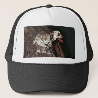 Speckled staffrog trucker hat