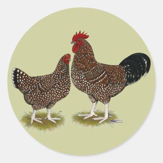 Speckled Sussex Chickens Classic Round Sticker