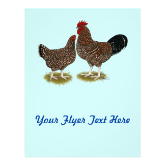 Speckled Sussex Chickens Flyer