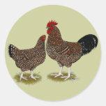 Speckled Sussex Chickens Round Stickers