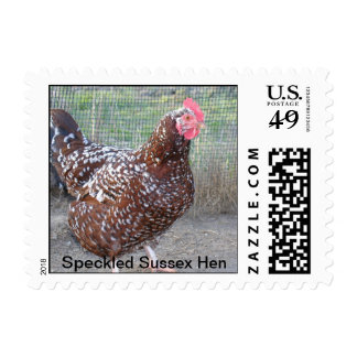 Speckled Sussex Hen Stamps