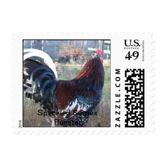 Speckled Sussex Rooster Postage