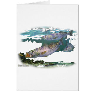 Speckled Trout Feeding Card