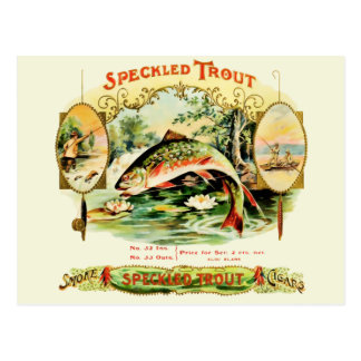 Speckled Trout Vintage Cigar Box Label Postcard