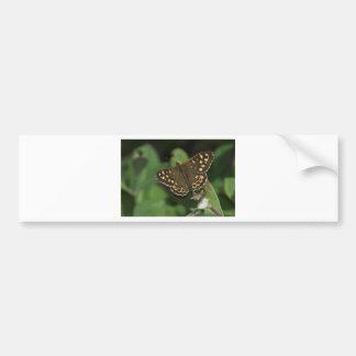 Speckled Wood Butterfly Bumper Sticker