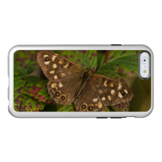 Speckled Wood Butterfly Incipio Feather Shine iPhone 6 Case