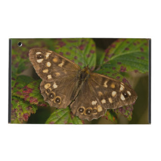 Speckled Wood Butterfly iPad Cover