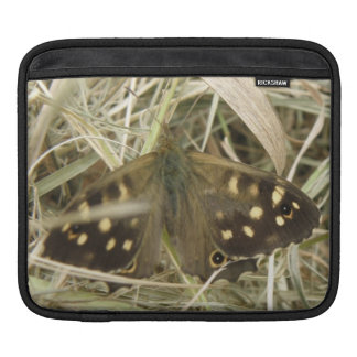 Speckled Wood Butterfly IPad Sleeve