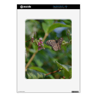 Speckled Wood Butterfly Skin For iPad