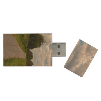 Spectacle Island in Boston Harbor Wood USB 2.0 Flash Drive