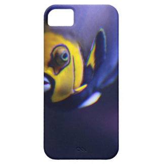 spectacled angelfish iPhone 5 covers