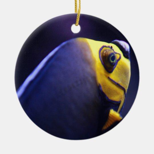 spectacled angelfish ceramic ornament