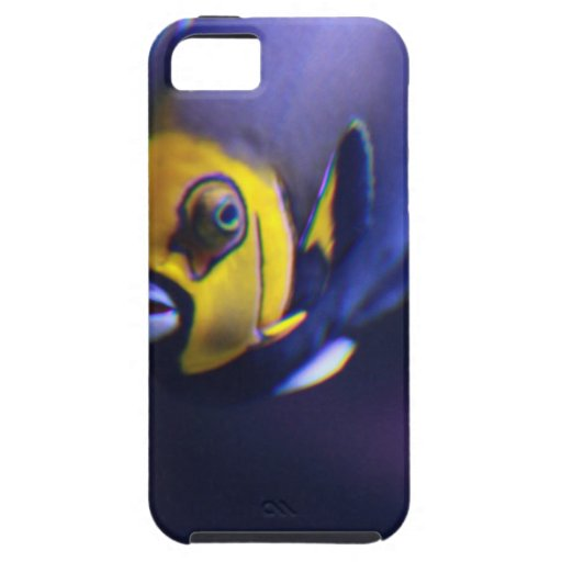 spectacled angelfish iPhone 5 cases