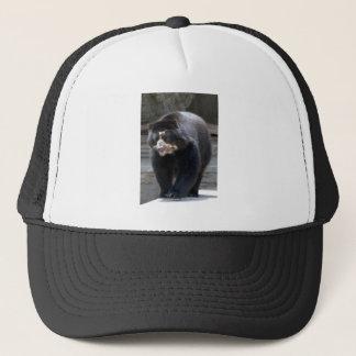spectacled bear4x6 trucker hat
