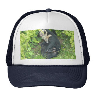 Spectacled Bear Cap, Animals Collection Hats